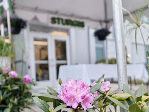 Sturgis-west-sign-building